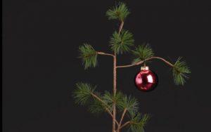 celebrar navidad más caro